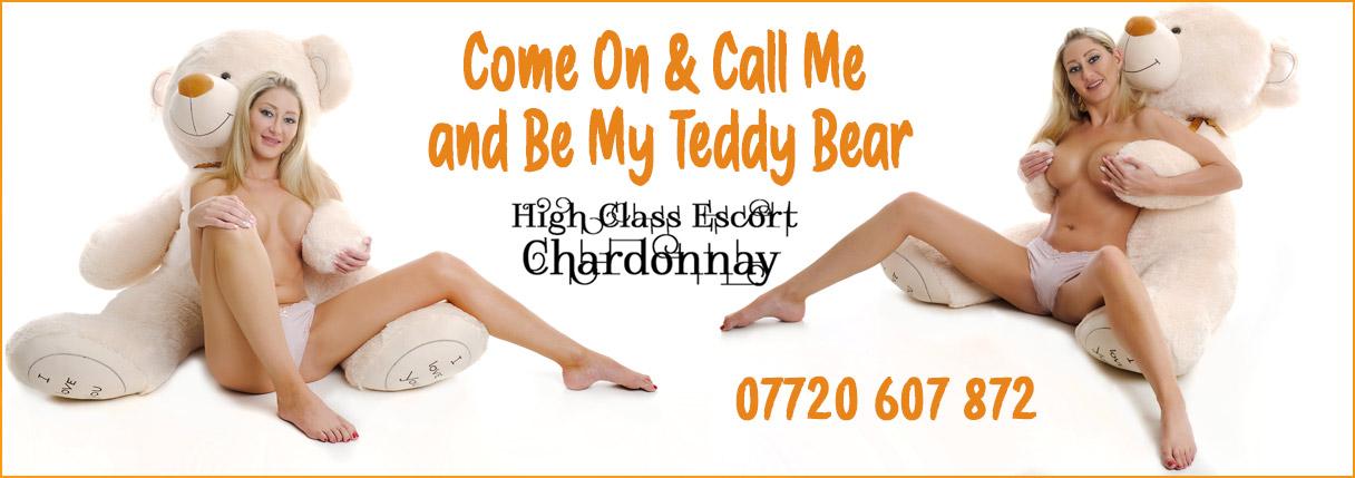 be-my-teddy-bear